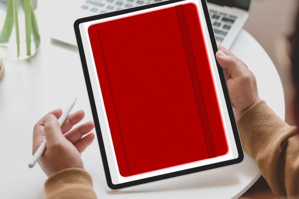 ProDuVi Notizbuch rot